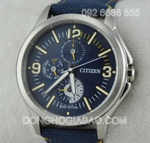 CITIZEN-AP4000-15L
