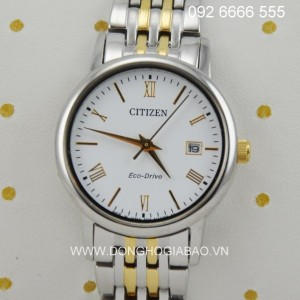 CITIZEN-F101