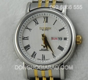 CITIZEN-F104